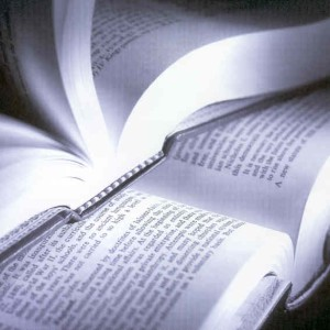Dez livros indispensáveis para jornalistas
